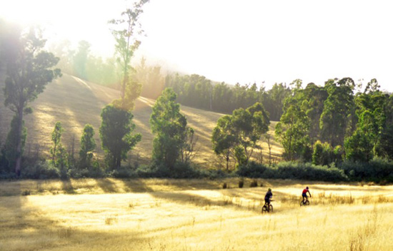 Mountain biking at Kellevie Tasmania, photo by Duncan Giblin